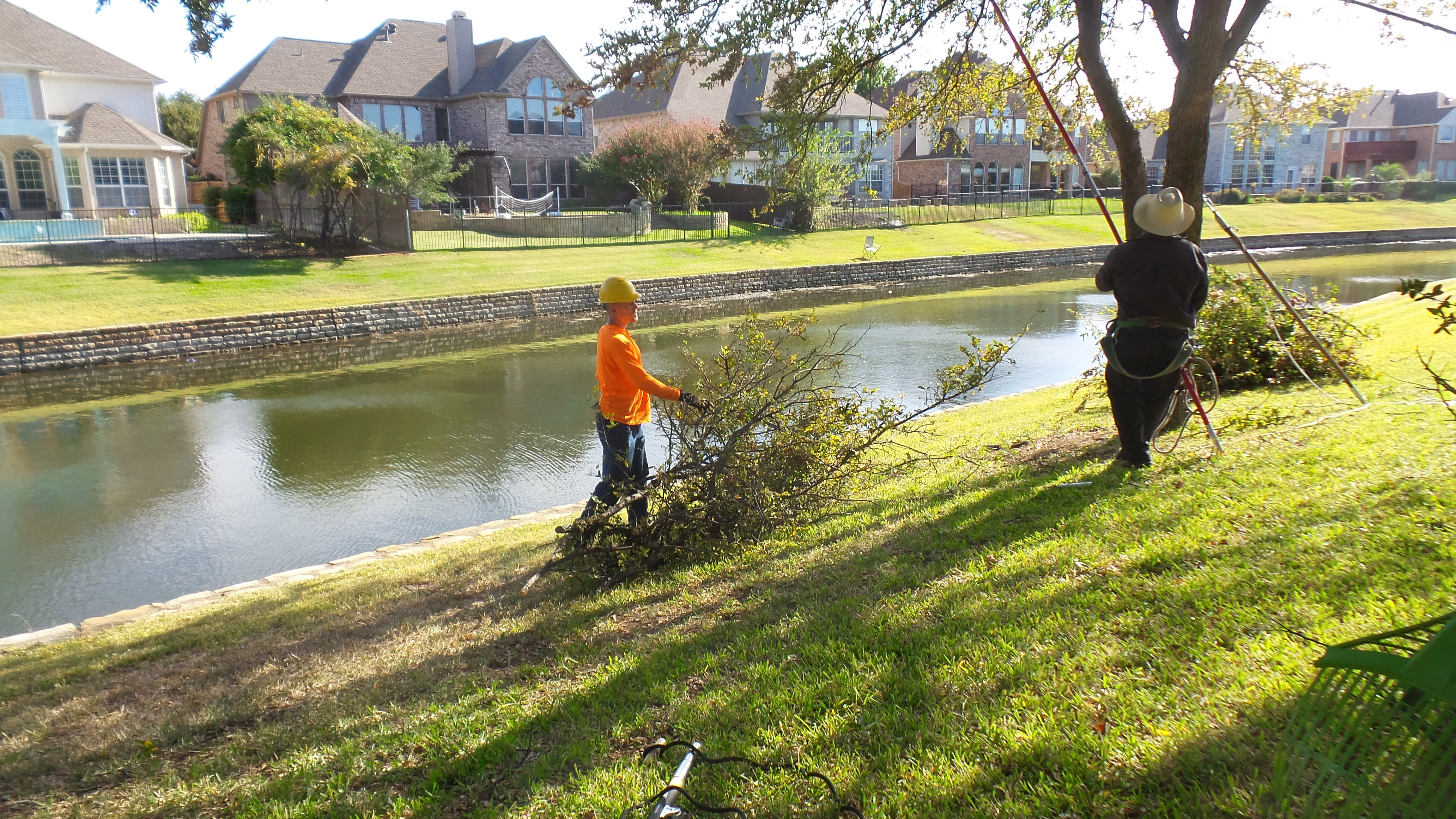 D & J Arborist Tree Services Offers Commercial Tree Services in Plano, Dallas & McKinney, TX